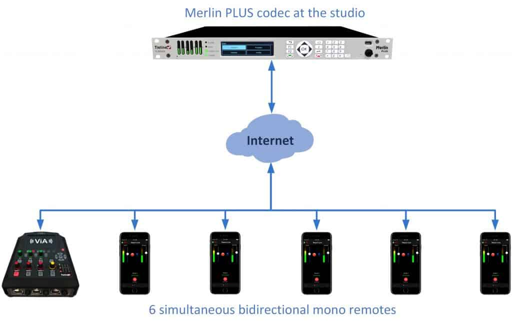6 Mono Connections to Merlin PLUS
